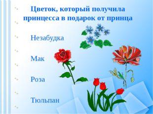 Цветок, который получила принцесса в подарок от принца Мак Тюльпан Роза Незаб