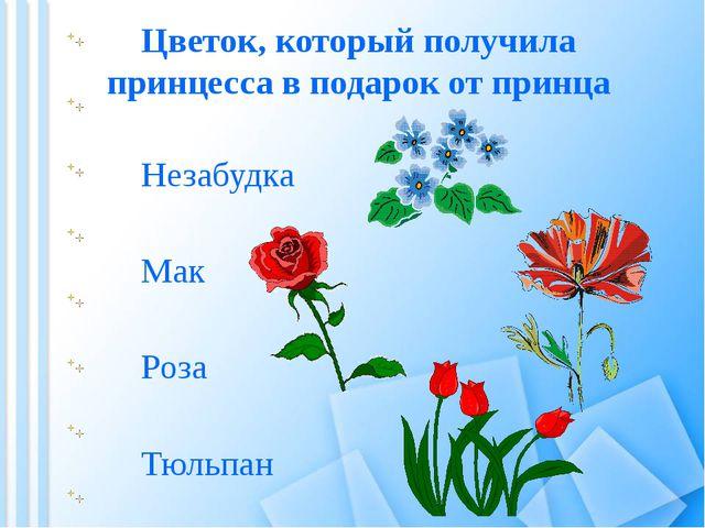 Цветок, который получила принцесса в подарок от принца Мак Тюльпан Роза Незаб...