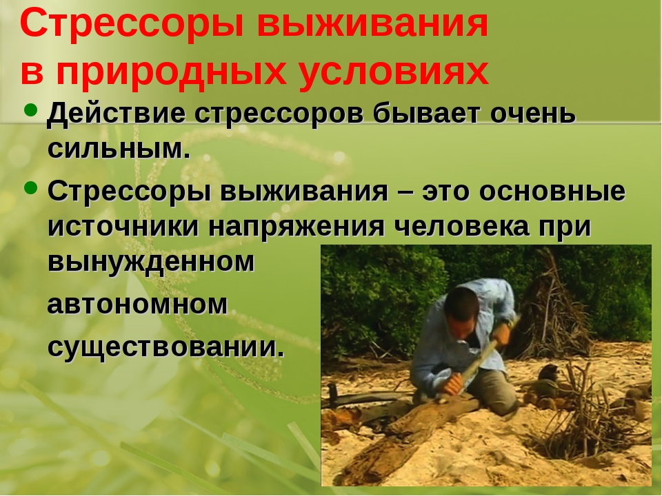 Стрессоры выживания в природных условиях Действие стрессоров бывает очень сил...