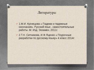 Литература: 1.М.И. Кузнецова « Падежи и падежные окончания». Русский язык , с