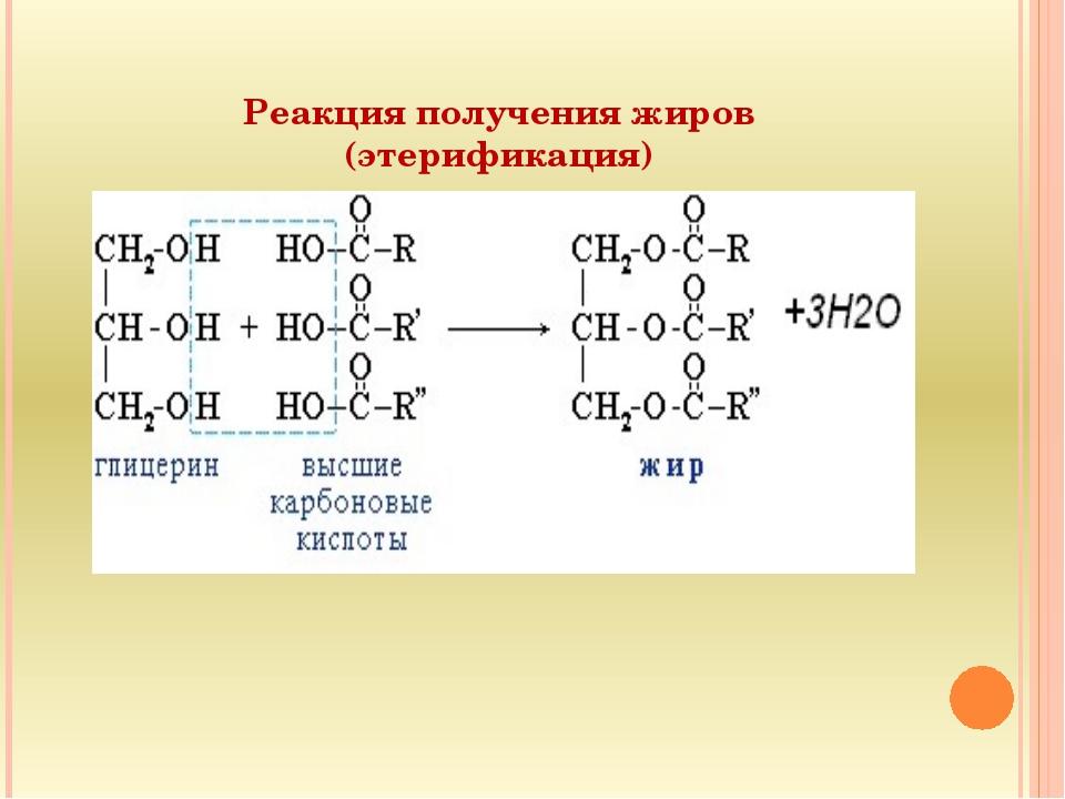 Реакция получения жиров (этерификация)