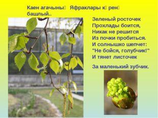 Зеленый росточек Прохлады боится, Никак не решится Из почки пробиться. И солн