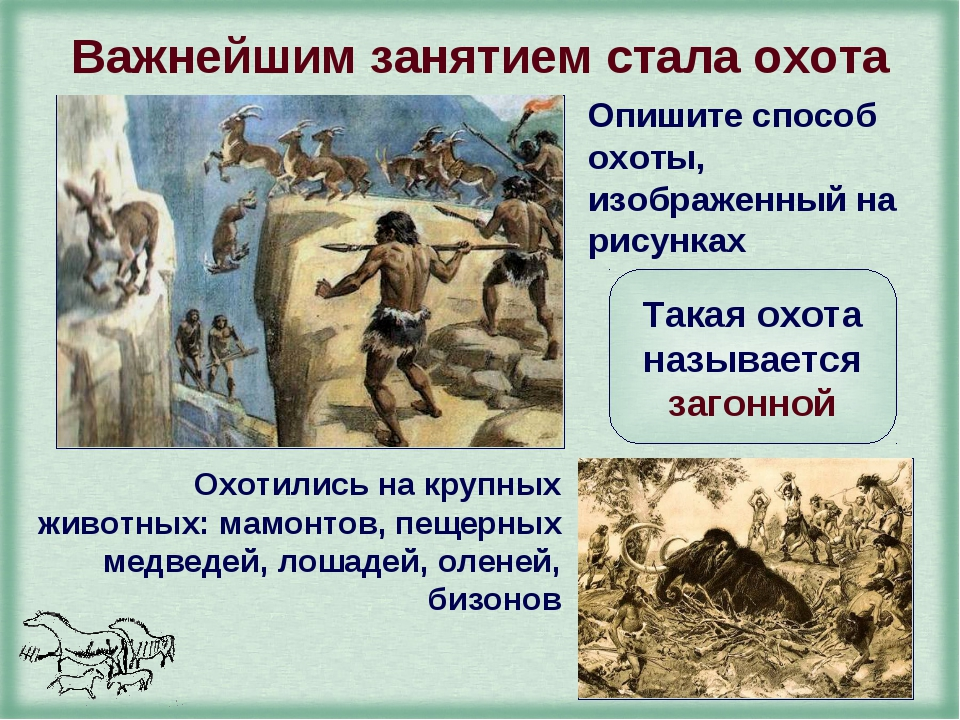 Важнейшим занятием стала охота Опишите способ охоты, изображенный на рисунках...