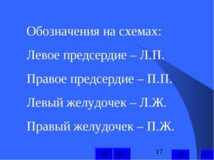 Обозначения на схемах: Левое предсердие – Л.П. Правое предсердие – П.П. Левый