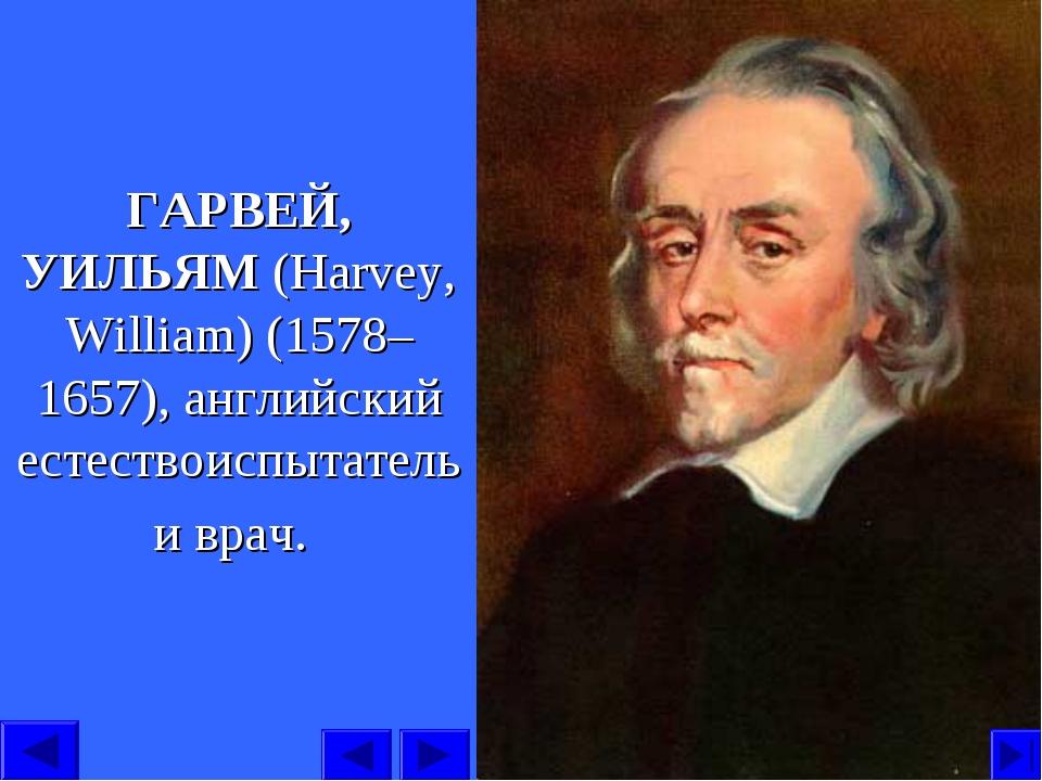 ГАРВЕЙ, УИЛЬЯМ (Harvey, William) (1578–1657), английский естествоиспытатель и...