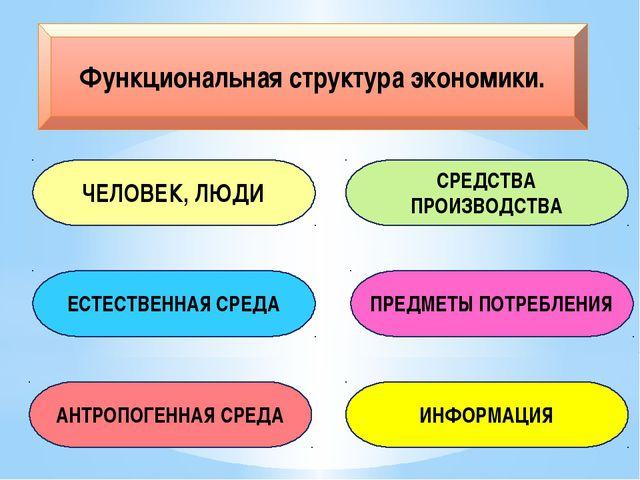 Функциональная структура экономики. ЧЕЛОВЕК, ЛЮДИ ЕСТЕСТВЕННАЯ СРЕДА СРЕДСТВА...