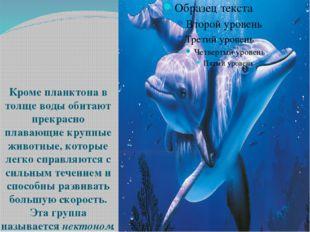 Кроме планктона в толще воды обитают прекрасно плавающие крупные животные, к