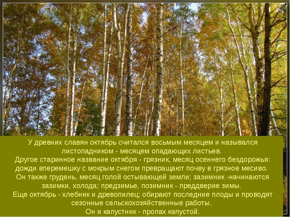 У древних славян октябрь считался восьмым месяцем и назывался листопадником...