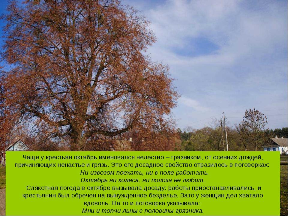 Чаще у крестьян октябрь именовался нелестно – грязником, от осенних дождей, п...