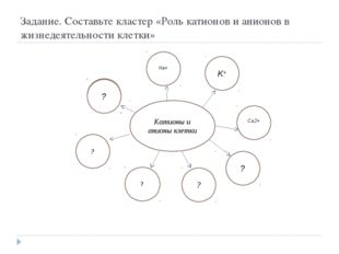Задание. Составьте кластер «Роль катионов и анионов в жизнедеятельности клетк