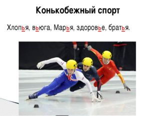 Конькобежный спорт Хлопья, вьюга, Марья, здоровье, братья.