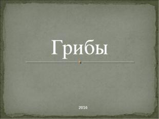 Грибы 2016