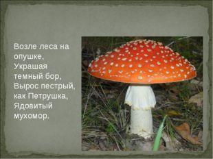 Возле леса на опушке, Украшая темны