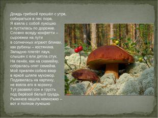 Дождь грибной прошёл с утра, собираться в лес пора. Я взяла с собой лукошко и