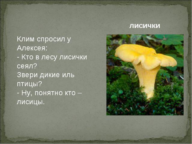 Клим спросил у Алексея: - Кто в лесу лисички сеял? Звери дикие иль птицы? - Н...