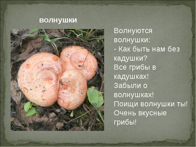 Волнуются волнушки: - Как быть нам без кадушки? Все грибы в кадушках! Забыли...