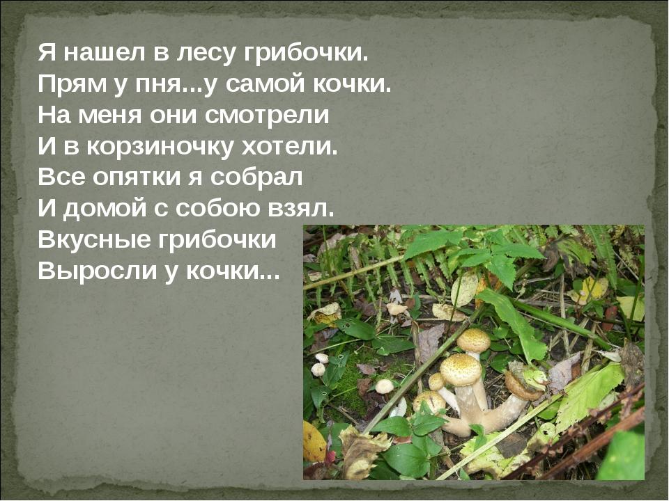 Я нашел в лесу грибочки. Прям у пня...у самой кочки. На меня они смотрели И в...