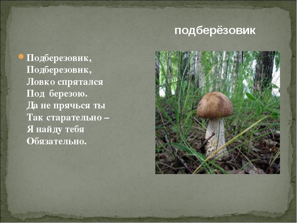 подберёзовик Подберезовик, Подберезовик, Ловко спрятался Под березою. Да не...