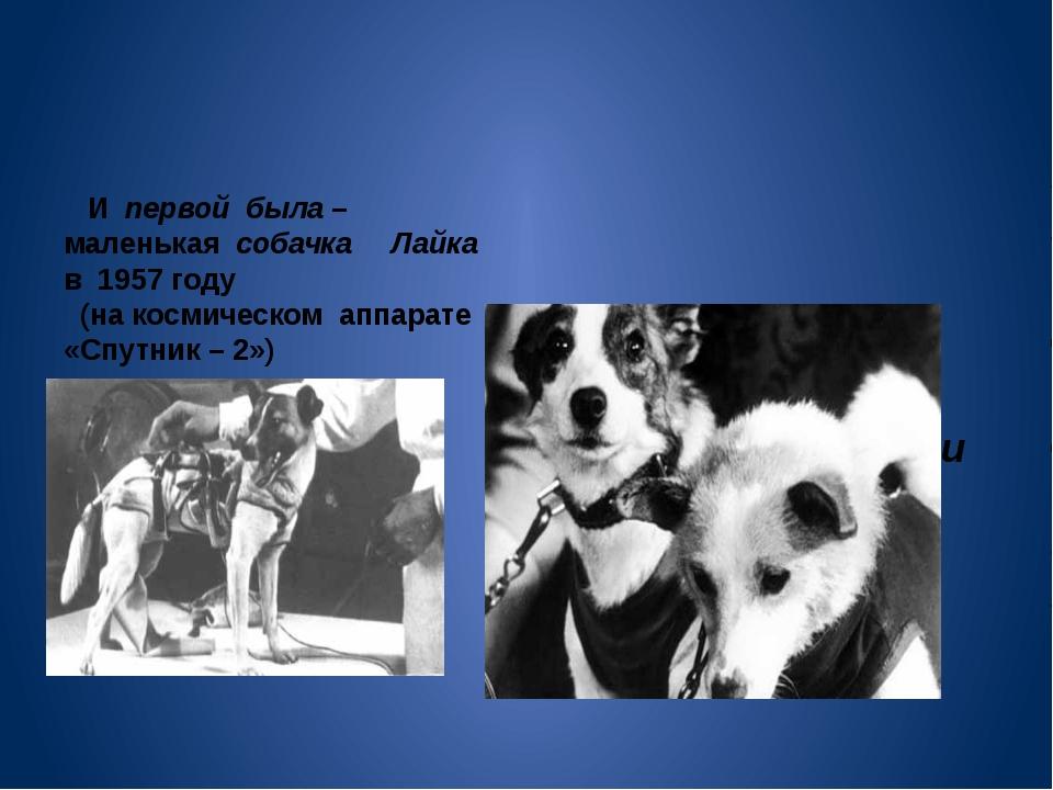 И первой была – маленькая собачка Лайка в 1957 году (на космическом аппарате...