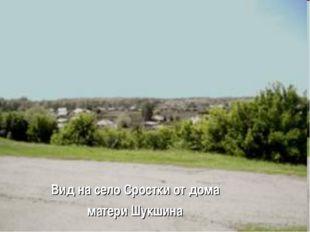 Вид на село Сростки от дома матери Шукшина
