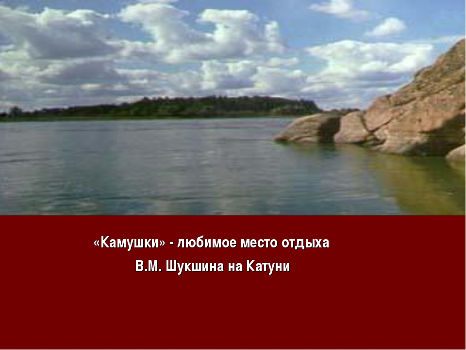 «Камушки» - любимое место отдыха В.М. Шукшина на Катуни