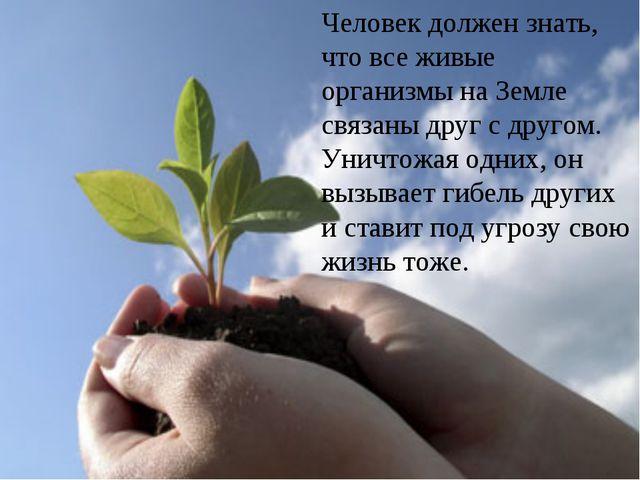 Человек должен знать, что все живые организмы на Земле связаны друг с другом....