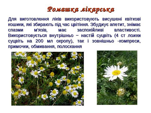 Ромашка лікарська Для виготовлення ліків використовують висушенi квiтковi кош...