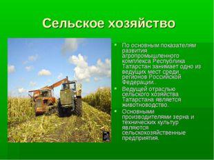 Сельское хозяйство По основным показателям развития агропромышленного комплек