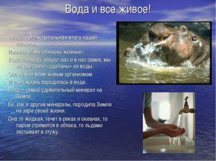 Вода и все живое! «Вода – это живительная влага нашей планеты. Именно ей мы о