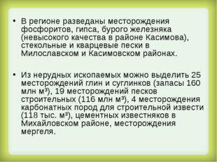 В регионе разведаны месторождения фосфоритов, гипса, бурого железняка (невысо