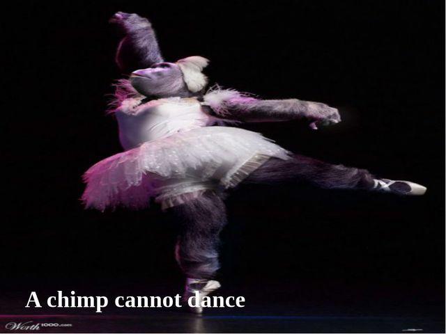 A chimp cannot dance