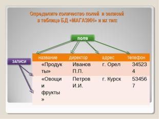Определите количество полей и записей в таблице БД «МАГАЗИН» и их тип: назван