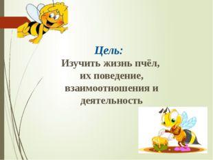Цель: Изучить жизнь пчёл, их поведение, взаимоотношения и деятельность