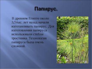 В древнем Египте около 3,5тыс. лет назад начали изготавливать папирус. Для и