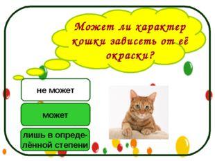 Может ли характер кошки зависеть от её окраски? может лишь в опреде- лённой с