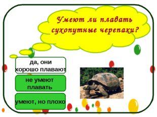 Умеют ли плавать сухопутные черепахи? не умеют плавать умеют, но плохо да, он