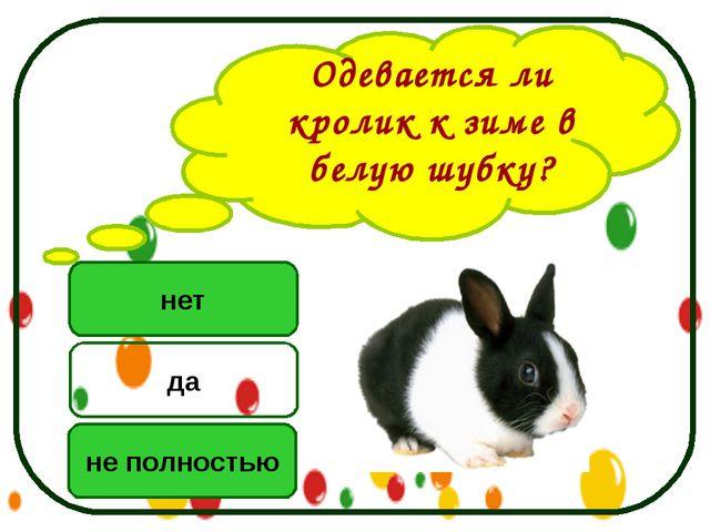 Одевается ли кролик к зиме в белую шубку? нет не полностью да