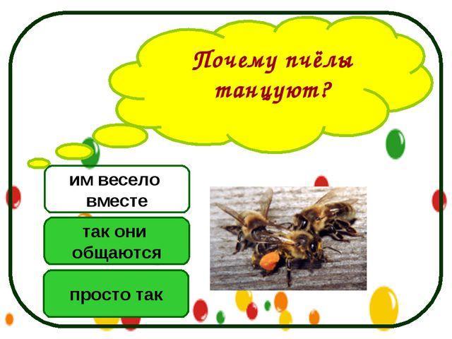 Почему пчёлы танцуют? так они общаются просто так им весело вместе