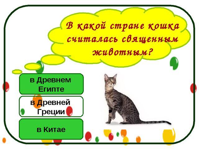 в Древнем Египте в Китае в Древней Греции В какой стране кошка считалась свящ...