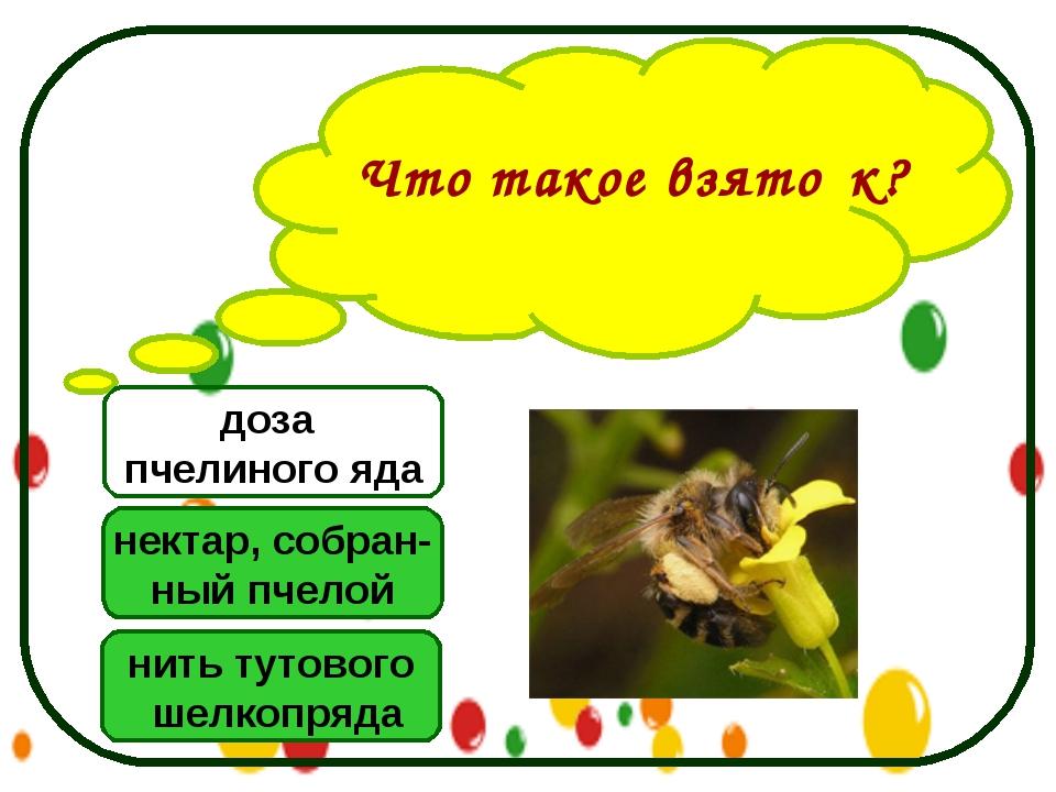 Что такое взято́к? нектар, собран- ный пчелой нить тутового шелкопряда доза п...