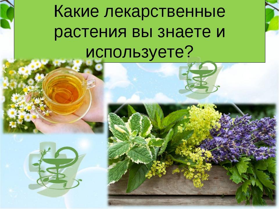 Какие лекарственные растения вы знаете и используете?