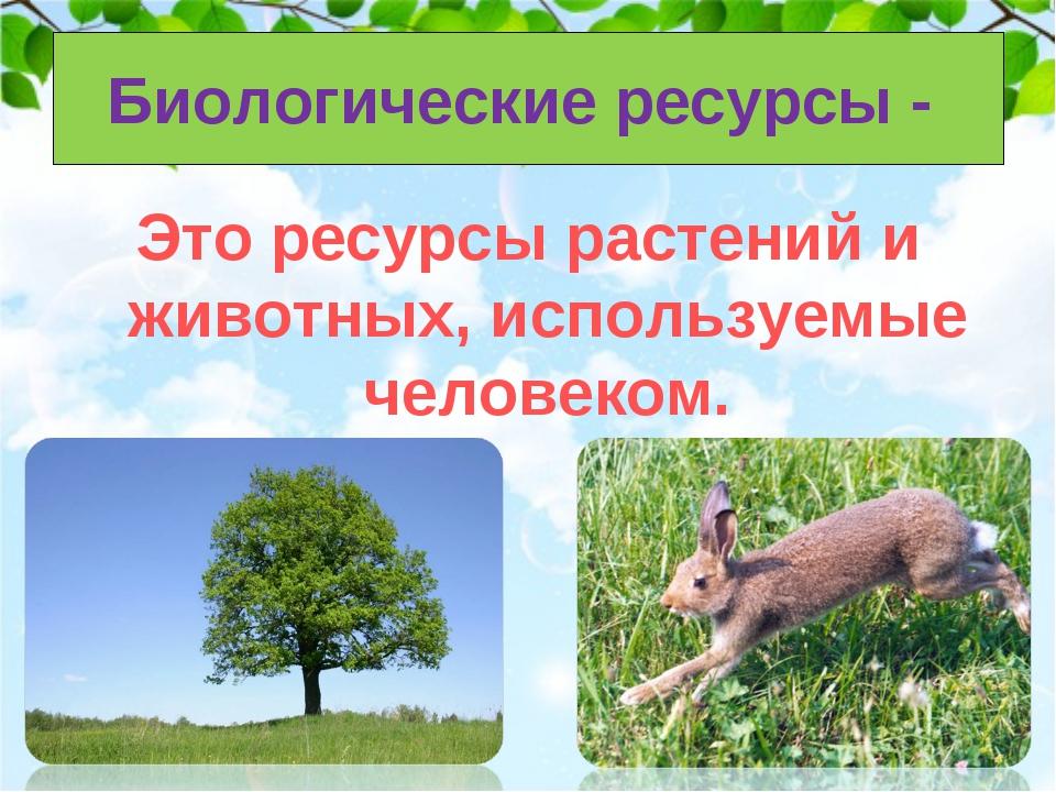 Биологические ресурсы - Это ресурсы растений и животных, используемые человек...