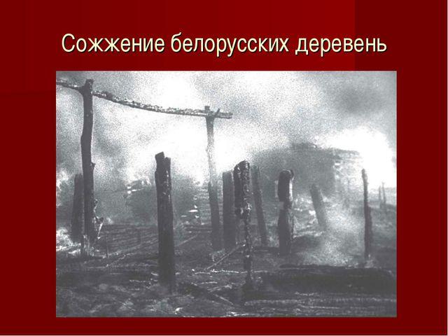 Сожжение белорусских деревень