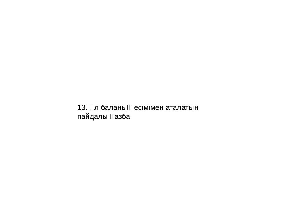 13. Ұл баланың есімімен аталатын пайдалы қазба