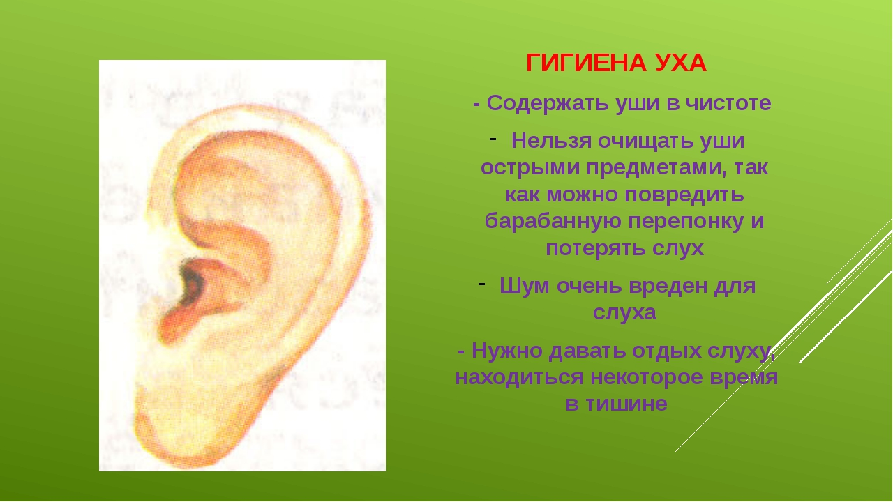 ГИГИЕНА УХА - Содержать уши в чистоте Нельзя очищать уши острыми предметами,...