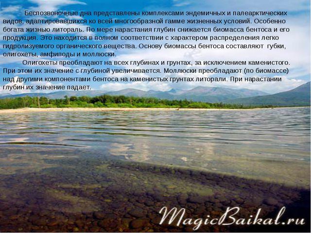 Беспозвоночные дна представлены комплексами эндемичных и палеарктических вид...