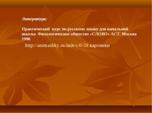 Литература: Практический курс по русскому языку для начальной школы. Филологи