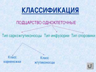 КЛАССИФИКАЦИЯ ПОДЦАРСТВО ОДНОКЛЕТОЧНЫЕ Тип саркожгутиконосцы Тип инфузории Т