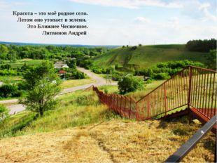 Красота – это моё родное село. Летом оно утопает в зелени. Это Ближнее Чесноч