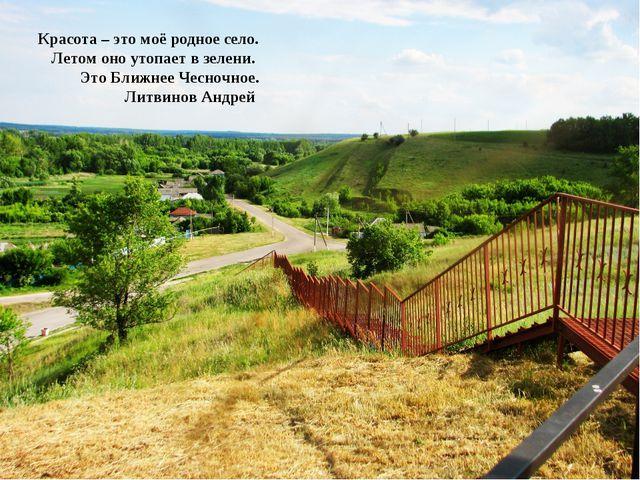 Красота – это моё родное село. Летом оно утопает в зелени. Это Ближнее Чесноч...